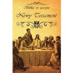 Biblia w zarysie. Nowy Testament (opr. twarda)