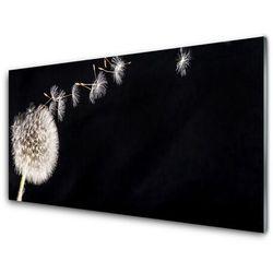 Panel Szklany Dmuchawiec Kwiat Roślin
