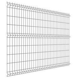 Panel ogrodzeniowy 173 x 250 cm antracyt VERA WIŚNIOWSKI 2021-07-14T00:00/2021-08-03T23:59