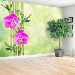 Fototapeta Orchidea i Bambus