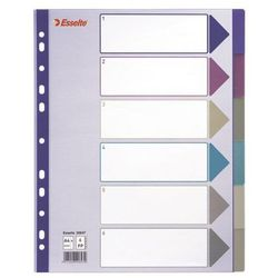 Przekładki indeksujące Esselte Multicolor Maxi A4+/6kart, 20647