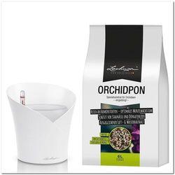 zestaw donica orchidea, biała + lechuza orchidpon - substrat do storczyków 6,00 litrów