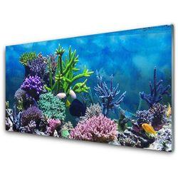 Panel Szklany Akwarium Rybki Pod Wodą