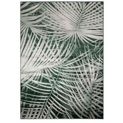 Zuiver Dywan PALM 200X300 BY DAY 6000099