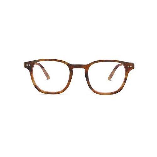 Okulary korekcyjne, Okulary Korekcyjne Arise Collective Leonardo B259