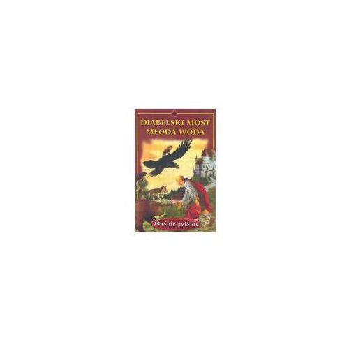 Książki dla dzieci, Diabelski most młoda woda (opr. broszurowa)