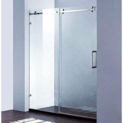 Drzwi Prysznicowe Przesuwne Liniger D20P2 PREMIUM
