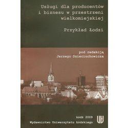 Usługi dla producentów i biznesu w przestrzeni wielkomiejskiej (opr. miękka)