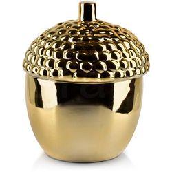 GIA Pojemnik dekoracyjny 14xh17cm ŻOŁĄDŹ złoty