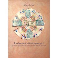 Książki o biznesie i ekonomii, Rachunek efektywności systemu informacyjnego rachunkowości (opr. miękka)