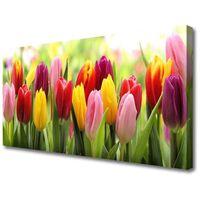 Obrazy, Obraz Canvas Tulipany Kwiaty Natura