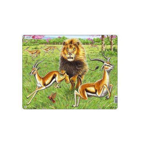 Puzzle, Puzzle MAXI - Lev na lovu/63 dílků neuveden