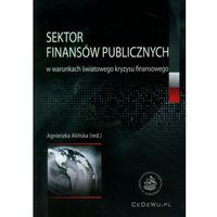 Książki o biznesie i ekonomii, Sektor finansów publicznych w warunkach światowego kryzysu finansowego (opr. miękka)