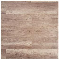 Panele podłogowe Dąb Queensland AC5 2,22 m2