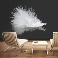 Fototapety, Fototapeta - White feather