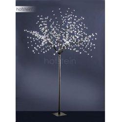 Leuchten Direkt Drzewo LED Czarny, 600-punktowe - Nowoczesny/Design - Obszar zewnętrzny - Direkt - Czas dostawy: od 3-6 dni roboczych