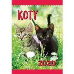 Kalendarz ścienny 2020 Koty