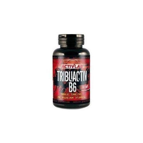 Odżywki białkowe, ActivLab Tribuactiv B6 90 kaps