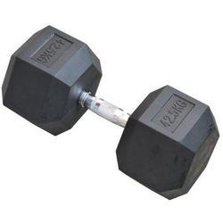 Hantla EB FIT Hex (42.5 kg)