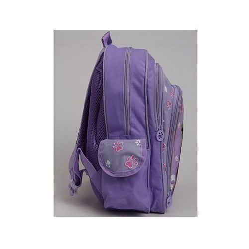 Tornistry i plecaki szkolne, Plecak szkolny