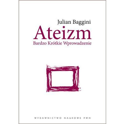 Humanistyka, Ateizm. Bardzo krótkie wprowadzenie - Julian Baggini (opr. miękka)