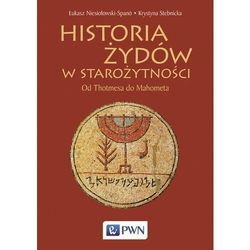 Historia żydów w starożytności - niesiołowski-spano łukasz, stebnicka krystyna (opr. miękka)