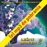 Pozostała muzyka rozrywkowa, (e) Leśny Spacer 2 - utwór nr 1.Szczęśliwy Las 00:59