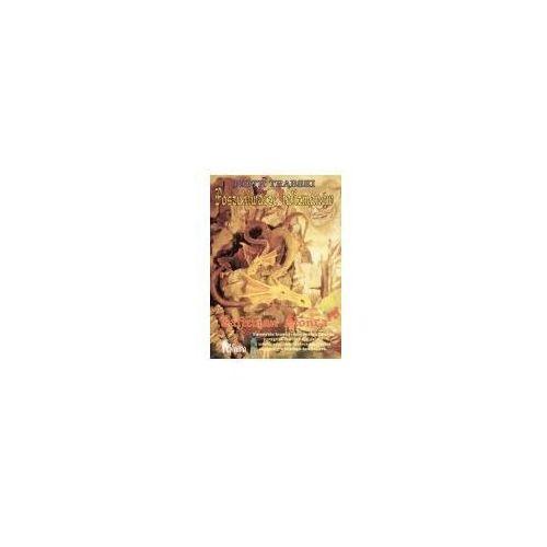 Książki dla dzieci, Talizman Słońca tom 1 - Piotr Trąbski (opr. broszurowa)