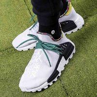Męskie obuwie sportowe, adidas x Pharrell Williams SOLARHU NMD (EE7583)