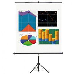 Ekran projekcyjny na statywie BASIC, 2400 x 1800 mm