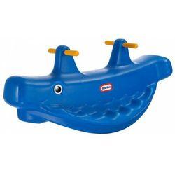 Wieloryb na biegunach
