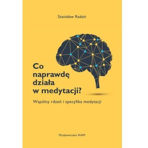 Książki religijne, Co naprawdę działa w medytacji? Wspólny rdzeń i specyfika medytacji (opr. miękka)