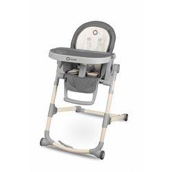 Krzesełko do karmienia Lionelo 5Y37GH Oferta ważna tylko do 2031-10-21