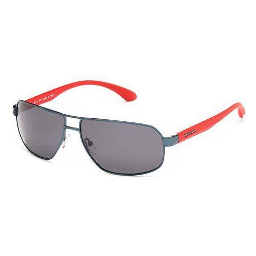 Okulary przeciwsłoneczne, Okulary przeciwsłoneczne Polar Vision PV 10022 A