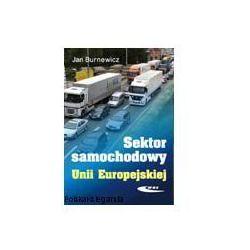 Sektor samochodowy Unii Europejskiej (opr. twarda)