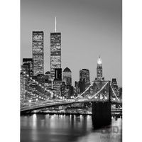 Fototapety, Fototapeta Manhattan Skyline at Night 388