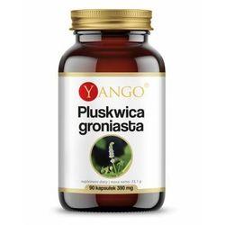 Yango, Pluskwica groniasta ekstrakt, 90 kaps
