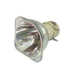 Lampa do PHILIPS-UHP 190/160W 0.8 E20.9 - oryginalna lampa bez modułu