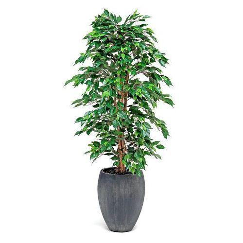 Rośliny, Sztuczny fikus z donicą, 1700 mm