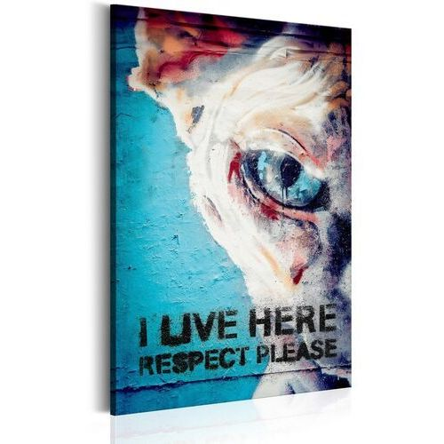 Obrazy, Obraz - I Live Here, Respect Please