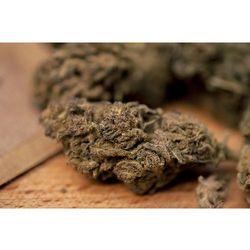 Susz konopny z CBD Remedium Mango Cookies 11,7% 1g 5g