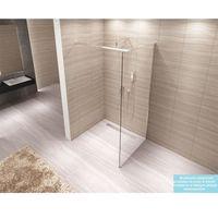 Ścianki prysznicowe, AERO Ścianka Walk-In 120x195, szkło transparentne + powłoka Easy Clean