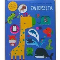 Książki dla dzieci, Moja niesamowita książka - Zwierzęta (opr. twarda)
