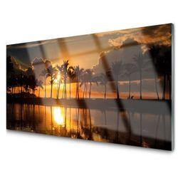 Obraz na Szkle Drzewa Słońce Krajobraz