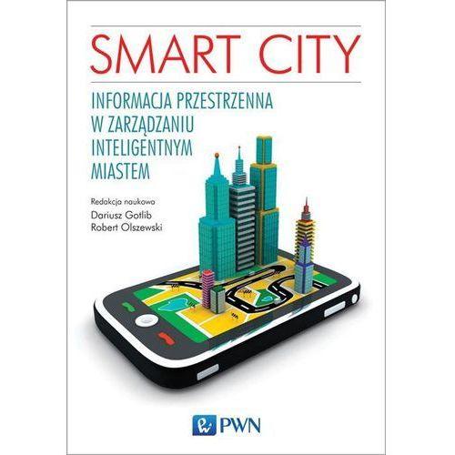 Biblioteka biznesu, Smart City. Informacja przestrzenna w zarządzaniu inteligentnym miastem (opr. miękka)