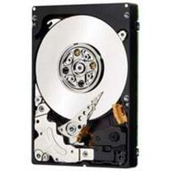 "IBM Dysk twardy - 500 GB - 2.5"" - 7200 rpm - SAS2 - cache"
