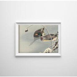 Plakat retro do salonu Plakat retro do salonu Dwie kaczki autorstwa Ohary Koson