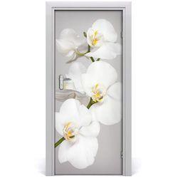 Nalepka Naklejka fototapeta na drzwi Biała orchidea
