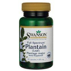 Swanson Full Spectrum Plantain (babka zwyczajna) 400mg 60 kaps.