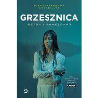 Książki horrory i thrillery, Grzesznica - Petra Hammesfahr (opr. broszurowa)